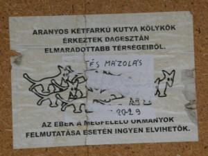Kétfarkú Kutya Párt,  Budapest, street art,  Magyarország, Belváros, Szemere utca, V. kerület, Aranyos kétfarkú kutyakölykök érkeztek Dagesztán elmaradottabb térségeiből. Az ebek a megfelelő okmányok felmutatása esetén ingyen elvihetők.